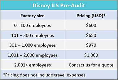 Disney_pre-audit