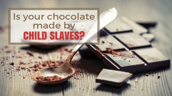 is your chocolate made by child slaves