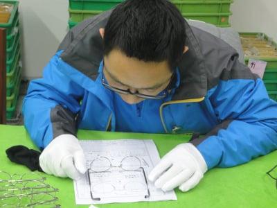 optics inspection